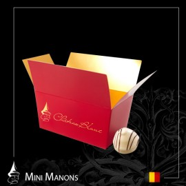 Chocolats Belges Mini Manons
